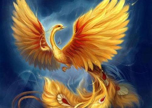 fiery-bird
